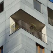 A102A1_Síť proti holubům - zasíťování rohového balkonu - protiholubum.cz