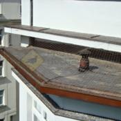 A204A2_Síť proti holubům střecha -protiholubum.cz